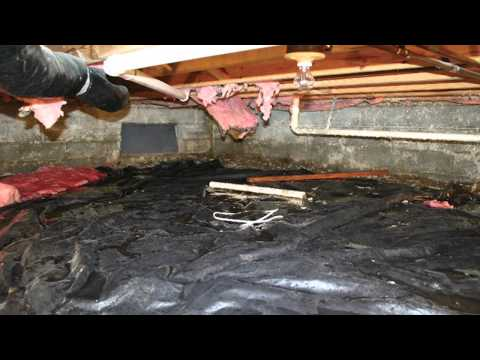 Crawl spaces are an extremely important area of the house to have properly sealed and waterproofed. Many of these crawl spaces often have a dirt floor, which allows for water to seep in under the home. Without proper encapsulation, problems like mildew, mold, wood rot, and household pests can all affect the quality of your home's air.