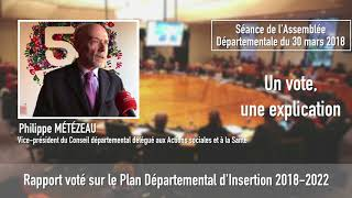 Vote du Plan départemental d'Insertion 2018-2022 en séance publique