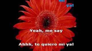 Sir Speedy - Te quiero mi yal (letra) (lyrics)