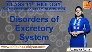 CH04-EXCRETION IN ANIMALS-PART09-DISORDERS OF EXCRETORY SYSTEM