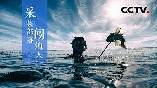《采集部落闯海人》深海游猎故事 | CCTV纪录