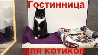 Гостиница для кошек. Реальный опыт!
