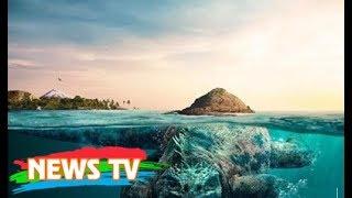 Quái vật khổng lồ biển Cát Bà?