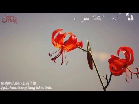 Nhokcungdau's Video 166758766036 fRONrQDNELc