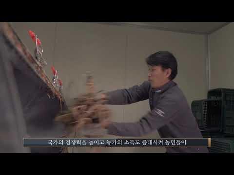 감초유통사업단 홍보영상