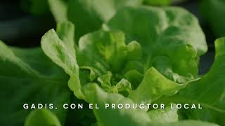 Supermercados GADIS Hortalizas Varela anuncio
