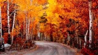 Нереально красивая осень! 30 моментов осени