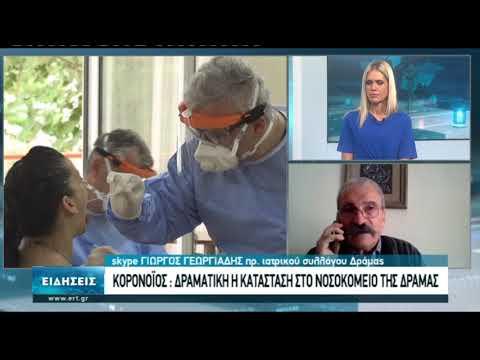 Συνέντευξη Γ. Γεωργιάδη πρ. Ιατρικού Συλλόγου Δράμας | 05/11/2020 | ΕΡΤ