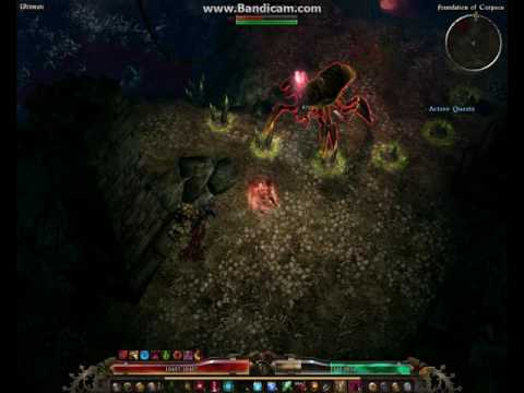 Grim Dawn WitchBlade with Blade Arc Build VS The Warden