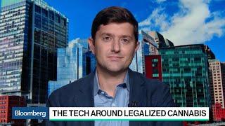 Gingko Bioworks CEO Explains the Tech Around Legalized Cannabis