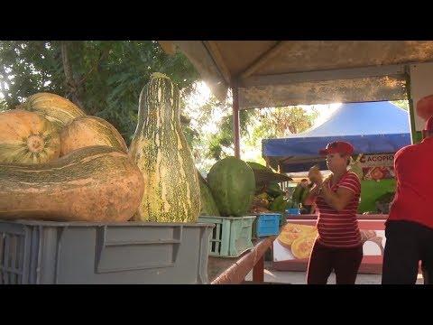 La voluntad de mantener la vitalidad de los servicios en la feria de alimentos en Granma
