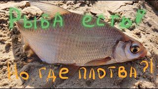 Отчет о рыбалке в киеве за март 2020