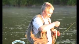 Рыбалка у села красное на волге