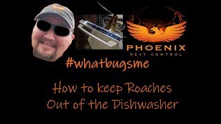 How to keep Roaches Out of the Dishwasher #whatbugsme | Phoenix Pest Control TN