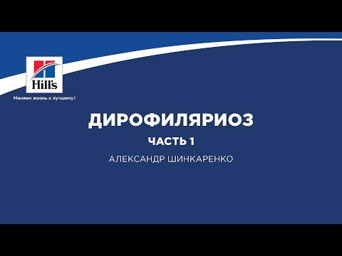 """Вебинар Hill's """"Дирофиляриоз. Часть 1""""."""