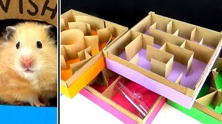 5-level Maze for Hamsters. Who is the BEST?
