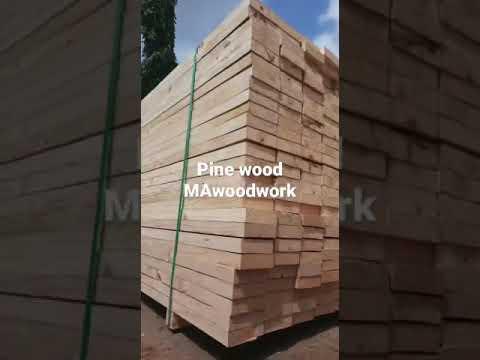 Pine Wood Planks In Gandhidham
