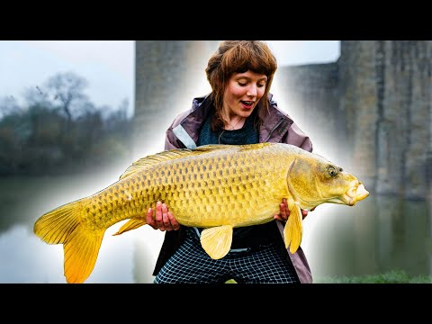 Fiskekavalkade fra England