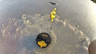 Ice Fishing near Kingston Jan 2