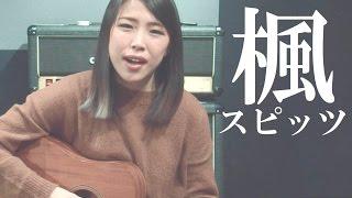 スピッツ - 楓 (Acoustic Ver.) | Eurie (Cover)