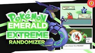 🏷 Pokemon oras randomizer download | [tool] pk3DS: 3DS ROM Editor