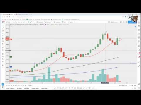 Pemula kereskedési bitcoin