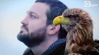 FRITZ KALKBRENNER   Void (Official Video)