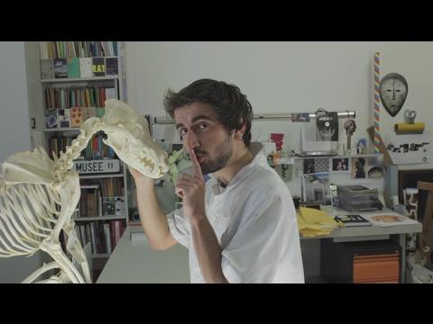 Comment le pénis peut-il être agrandi