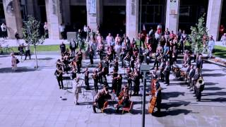 Huge symphonic & choir flashmob - Budapest, Hungary - Bánk Bán