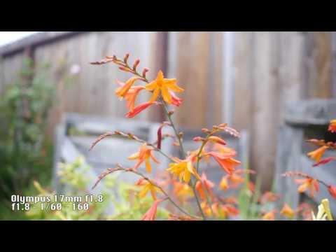 Video Test: Panasonic Lumix DMC-G6 with Various Lenses
