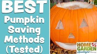 The BEST Method To Preserve Jack-O-Lanterns + Pumpkins