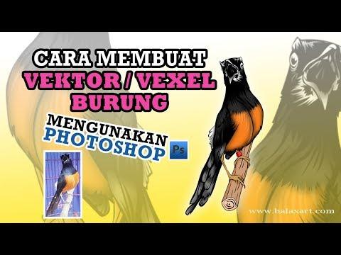 Cara Menggambar Burung Murai смотреть онлайн на Hahlife
