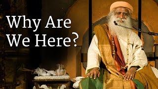 Why Are We Here? | Sadhguru