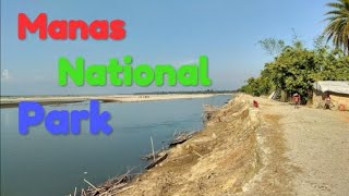 preview picture of video 'Manas National Park in Assam || মানস ৰাষ্ট্ৰীয় উদ্যান || manas rashtriya udyan assam'