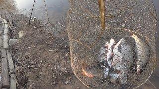 Отдых и рыбалка на волге тверь