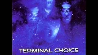 Terminal Choice - Totes Fleisch (Final Mix)