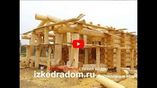 Баня в Русском стиле 100 м2 из кедра большого диаметра | Эксклюзивные кедровые дома | izkedradom.ru