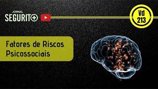 Vd. 213 - Fatores de Riscos Psicossociais