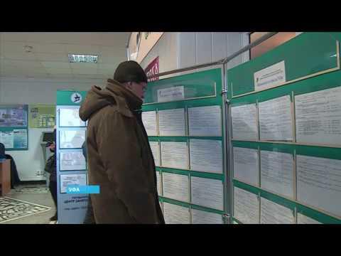 Как начисляется пособие по безработице в 2019 году:  размер, кому  положено и как оформить