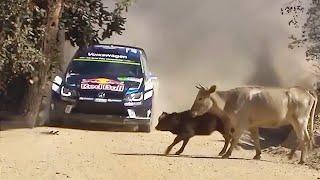 deportes  carreras de rally