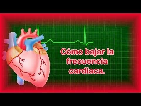 Trébol rojo en el tratamiento de la hipertensión