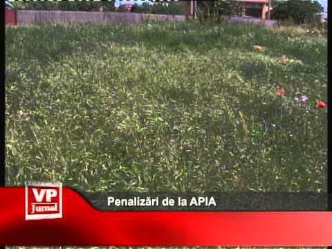 Penalizări de la APIA