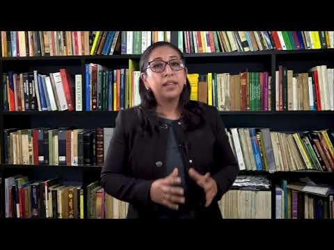 Opinión | La Mtra. nos brinda su opinión con respecto a ¿es realmente útil la Ley de Amnistía de AMLO?