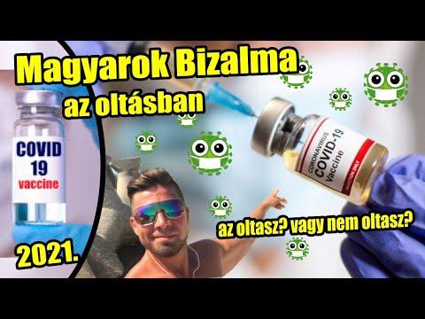 Bél pattanások strongyloids