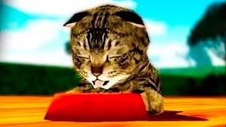 Играем в СИМУЛЯТОР КОШКИ #2 приключение мульт игр про котят развлекательное видео для детей ПУРУМЧАТ