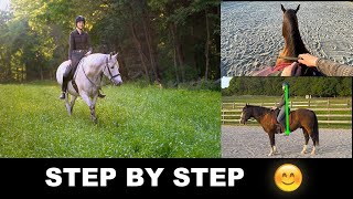HOW TO RIDE A HORSE FOR BEGINNERS (STEP BY STEP) 🐎