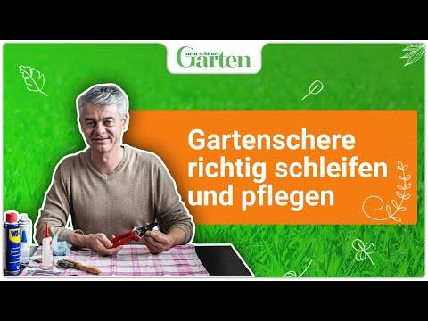 Gartentipp: Gartenschere richtig schleifen und pflegen