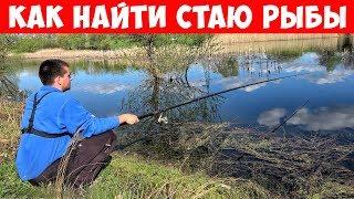 Как правильно выбирать место для рыбалки