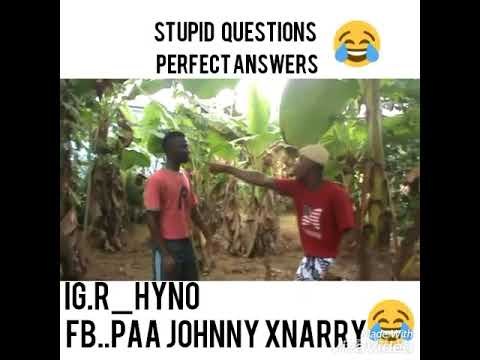 Stupid Questions & Perfect Answers..##r.hyno