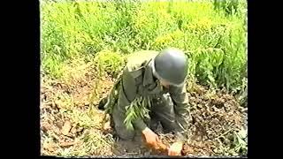 preview picture of video 'Przysięga Wojskowa - Brzeg 30.06.2001 godz. 9:00'